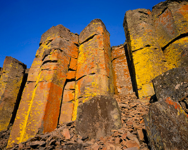 Lichen covered basalt columns in Central Oregon's High Desert